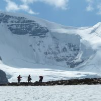 climbers on north face of mount Athabasca